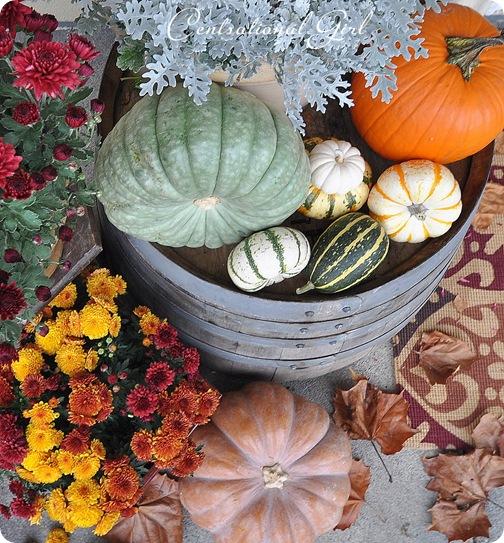 pumpkins on barrel cg
