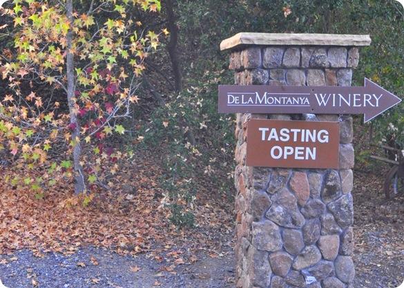 wine tasting de la montanya