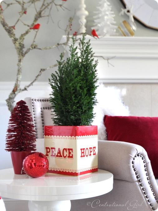 peace hope evergreen cg