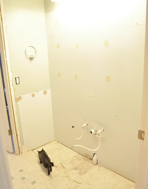 bathroom blank canvas