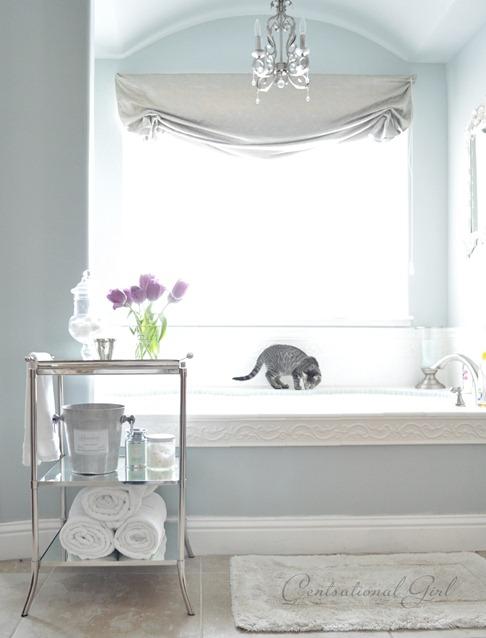 blue master bathtub cg