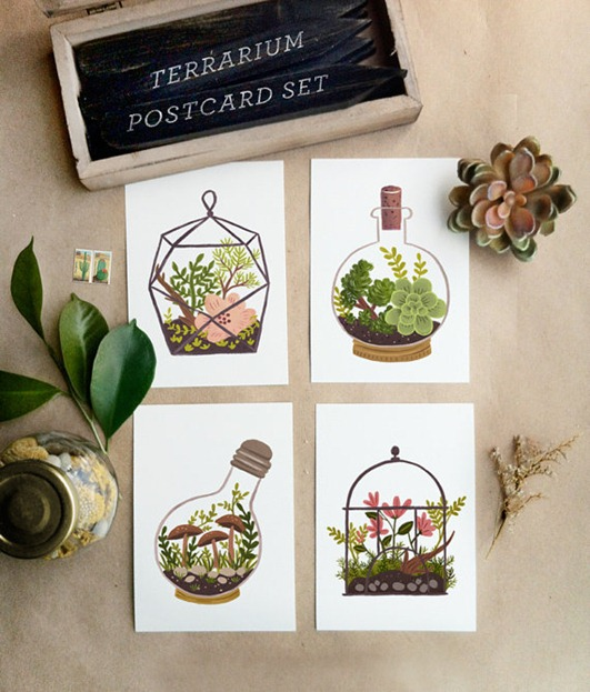 terrarium post cards quill and fox