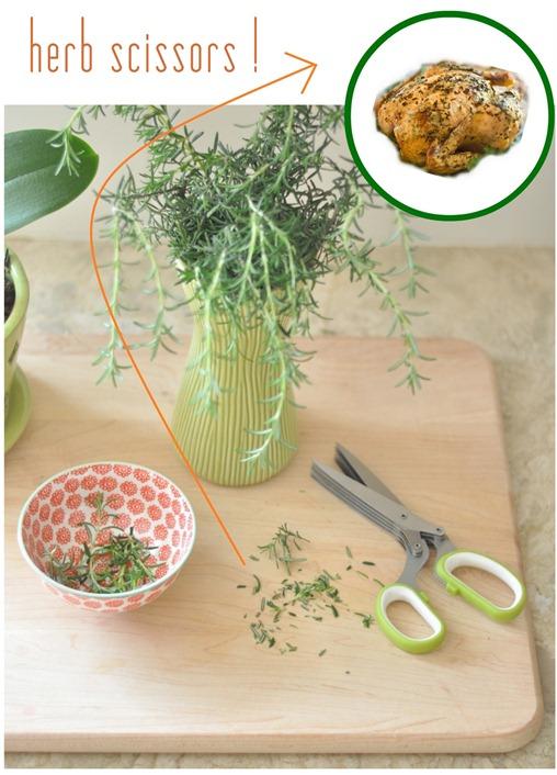 herb scissors for roasting