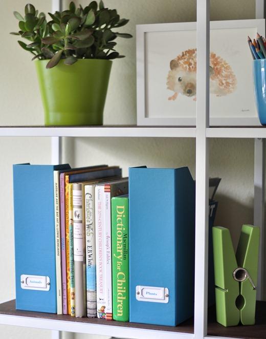 blue magazine folders and kids books