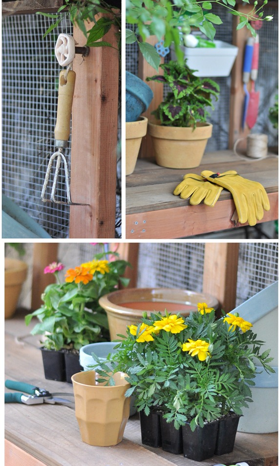 yellows gloves and marigolds