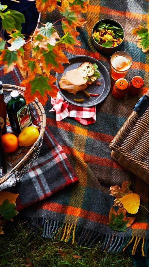 picnic scene the marionhousebook