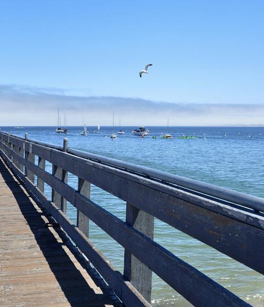 monterey fishermans wharf