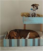palet dog bed