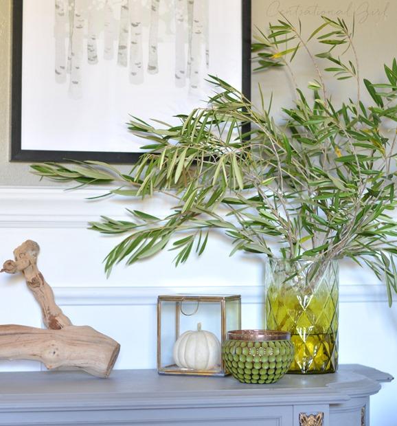 olive leaf branches green vase