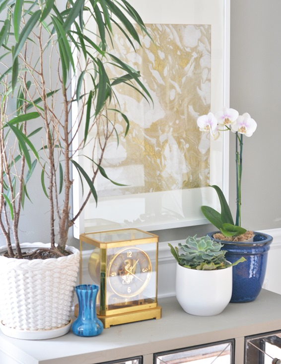 potted plant vignette