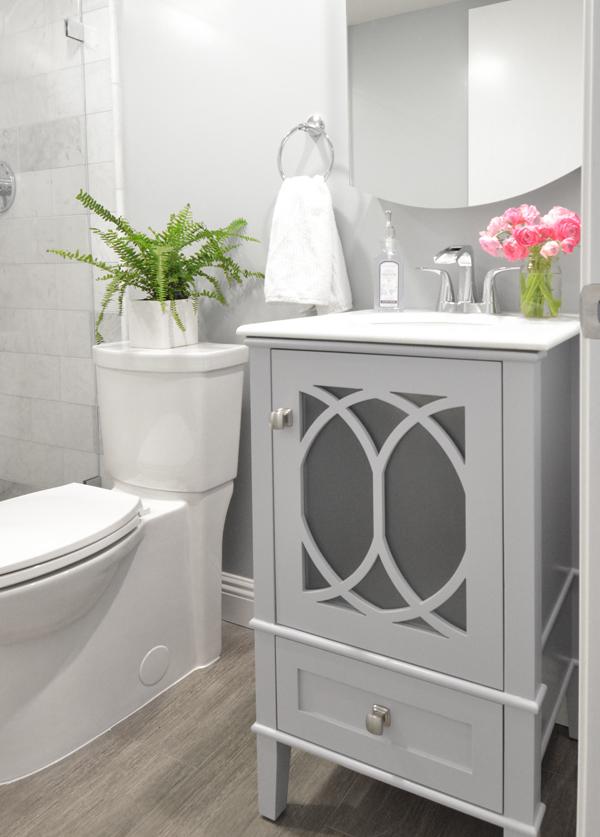Elegant basement bathroom vanity