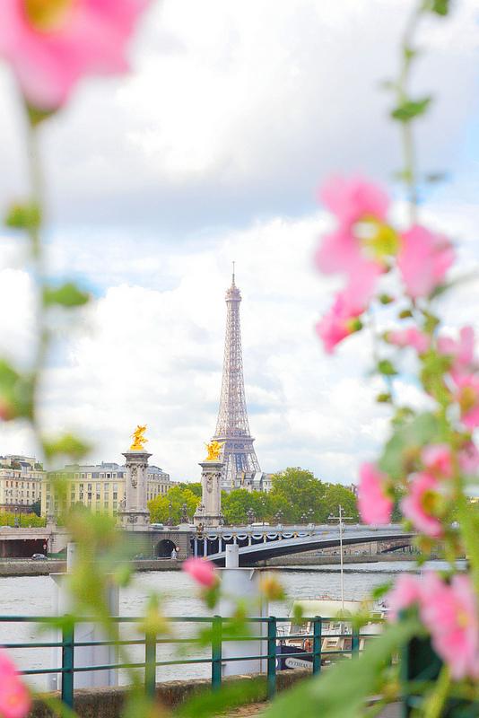 eiffel tower flower frame