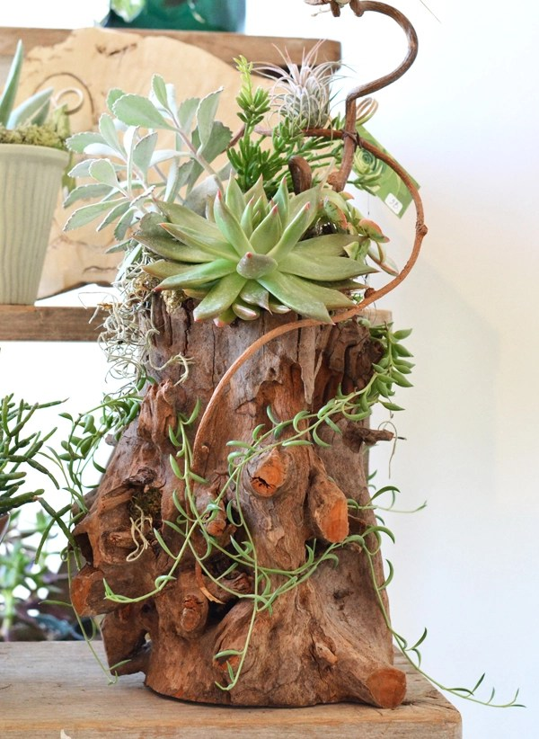 flourish log planter