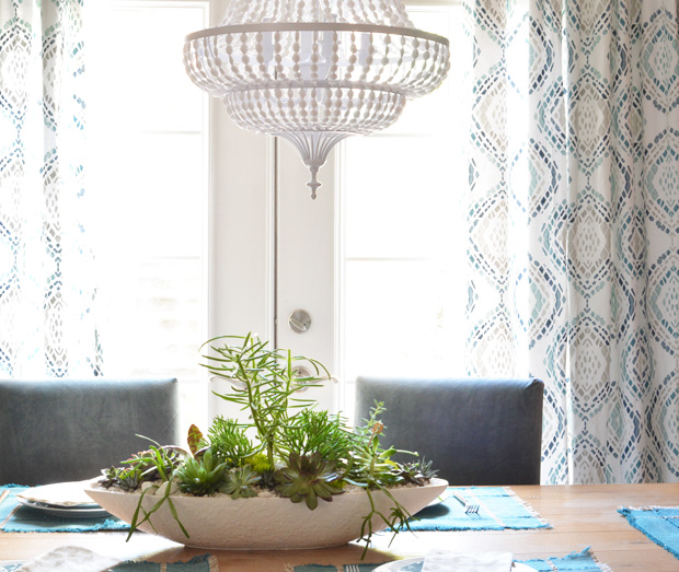 succulents dining room