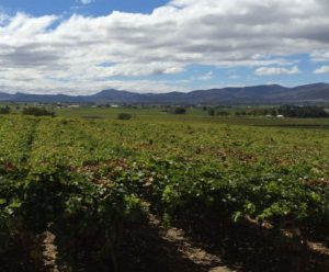 a farm in the Breede Catchment in South Africa