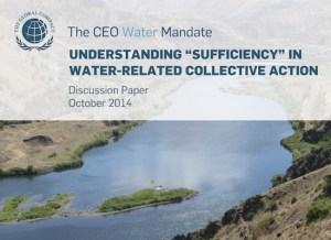 "Understanding ""Sufficiency"" in Water-Related Collective Action"