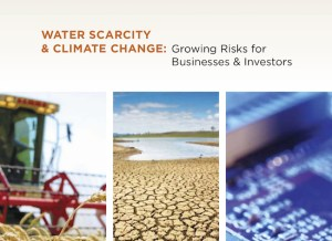 Water Scarcity and Climate Change: Growing Risks for Businesses and Investors