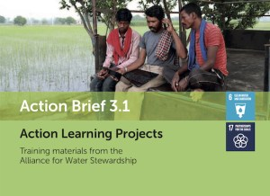 Action Brief 3.1: Action Learning Projects