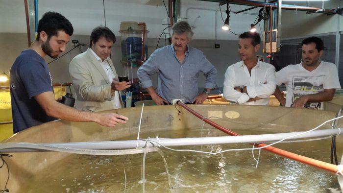 Gerpe y parte del gabinete provincial visitaron el Inidep
