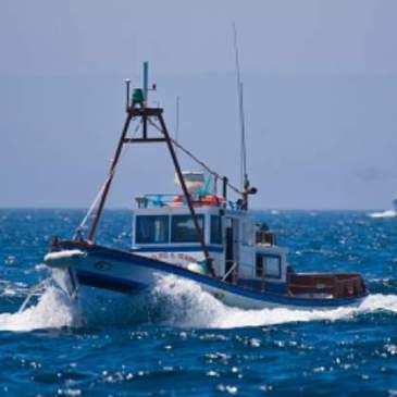 ¿España es en realidad una gran potencia pesquera?