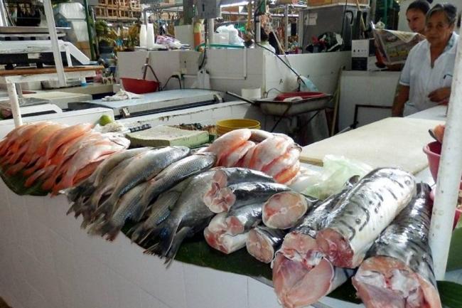 El comercio pesquero mundial alcanza récord este año