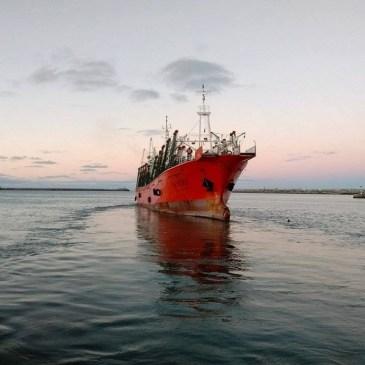 Balance de la temporada de calamar
