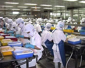 Fuerte crecimiento registran las exportaciones de langostino vietnamita