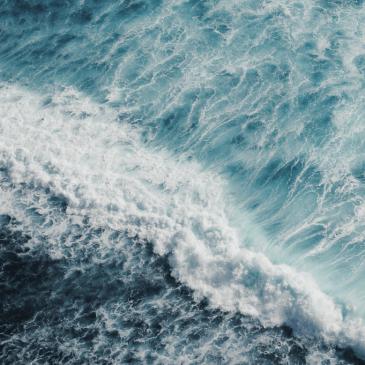 El Reino Unido plantea el objetivo de proteger el 30 % de los océanos mundiales en 2030