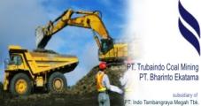 PT.TRUBAINDO COAL MINING