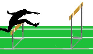 TWO HURDLES: Overcoming Donors' Greatest Anxieties with a Blended-gift Approach