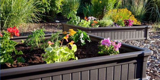 Best Raised Garden Beds How To Build A Raised Garden Bed In 2019 with regard to [keyword