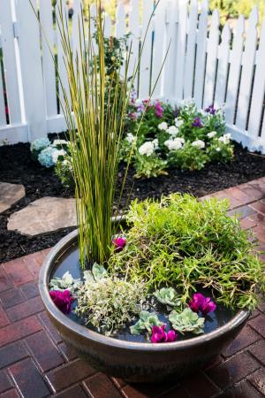 How To Make A Water Garden In A Pot Hgtv throughout 20+ How To Build Your Own Vertical Garden With A Pallet