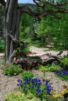 Photo Gallery Betty Ford Alpine Gardens pertaining to ucwords]