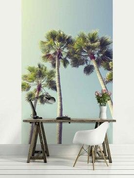 sous-les-palmiers