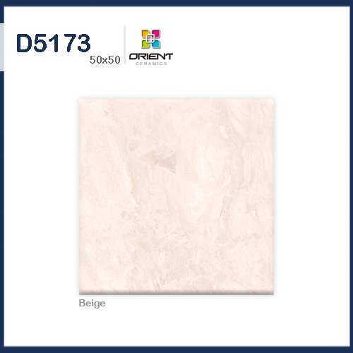 D5173