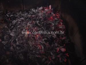 cinzas de flores do cedro