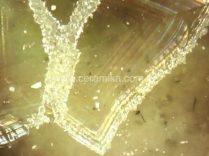 nucleação e crescimento de cristais em vidro