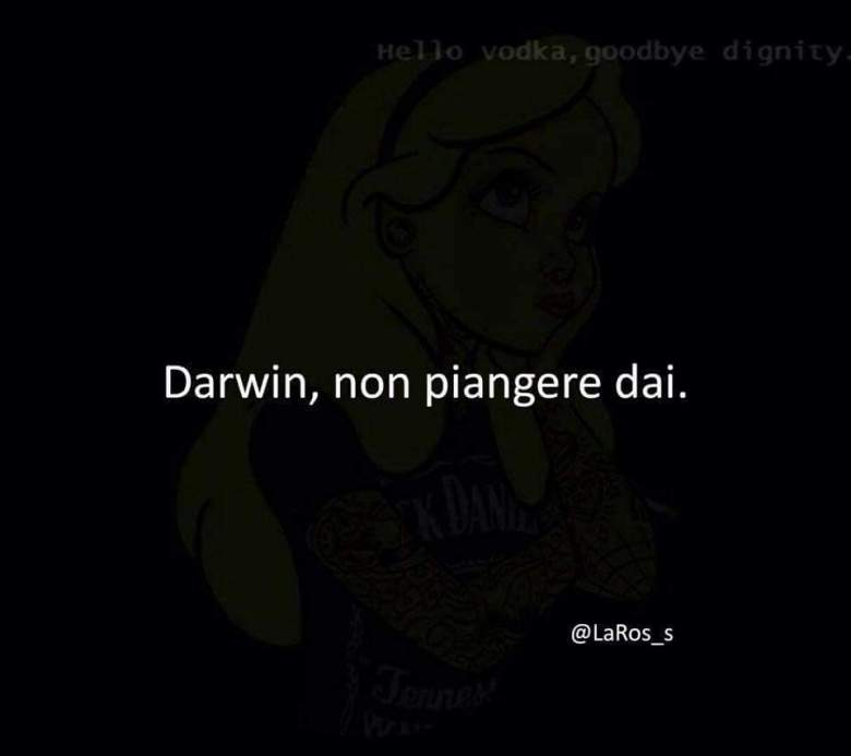 Darwin, non piangere dai