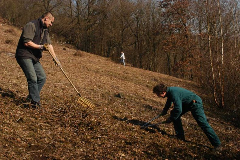 gestion de reserves naturelles en wallonie par les cercles des naturalistes de belgique