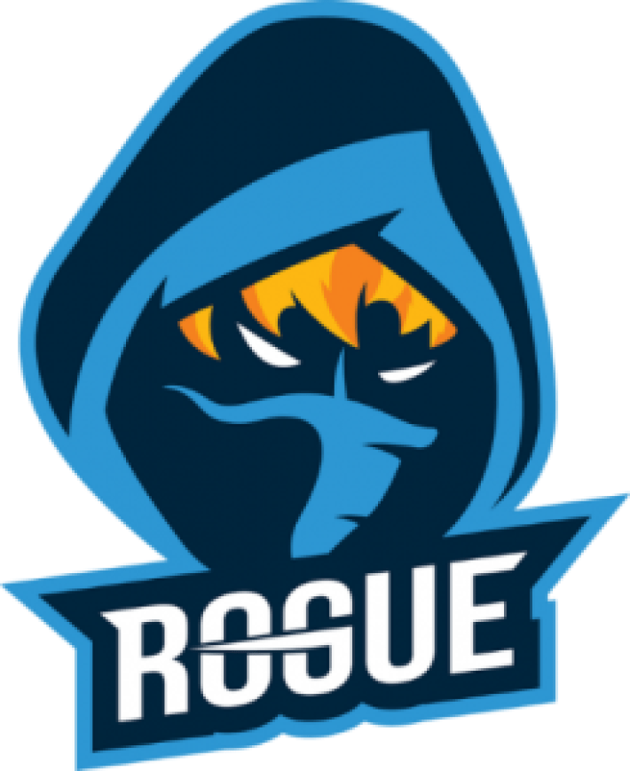 Team Rogue Signs Seven New Players To Its Professional Fortnite