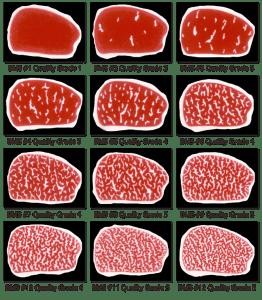 Beef-marbling-grades