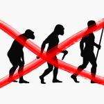 Evolución errónea