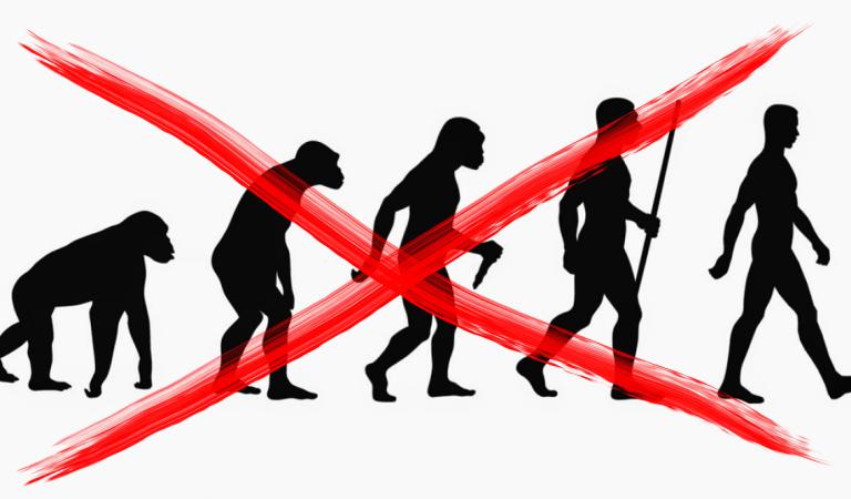 La Teoría de la Evolución de Darwin NO es como la pintan