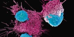 Un grupo de investigadores ha creado una nueva vacuna contra el VIH.