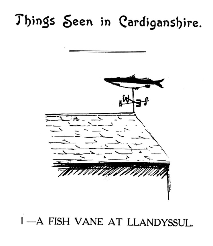 Things Seen in Cardiganshire - A Fish Vane at Llandyssul