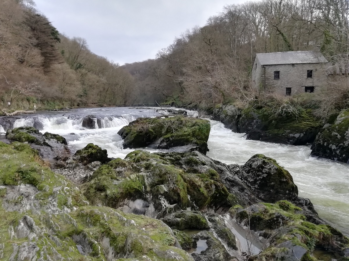 Cenarth Mill is first recorded in the 1180s, but the present rubble-stone building on the banks of the river dates to the late 18th century and most of its machinery dates to the 19th century.