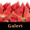 Bunları Sakın Yemeyin – Galeri