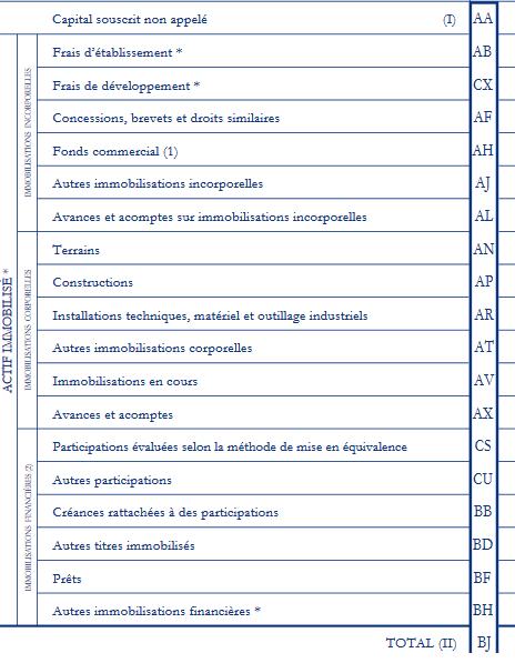 liasse fiscale 2050 Contrôler sa liasse fiscale avant lenvoi : partie immobilisations