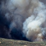 CERF+ Response to Northern California Wildfires