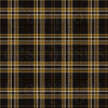 Tartan - Fall collection - 3 s